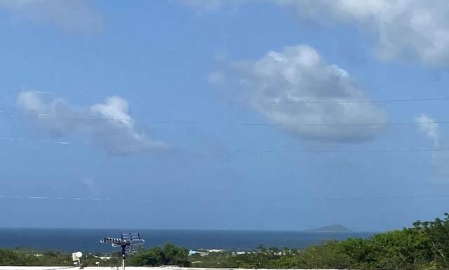34 St. John Qu, St. Croix, VI 00000 (MLS #21-833) :: Hanley Team | Farchette & Hanley Real Estate