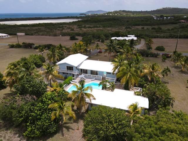 31 Southgate Farm Ea, St. Croix, VI 00820 (MLS #21-834) :: Hanley Team | Farchette & Hanley Real Estate
