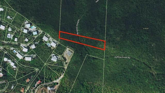 C-1 Nullyberg, St. Thomas, VI 00802 (MLS #21-837) :: Hanley Team | Farchette & Hanley Real Estate
