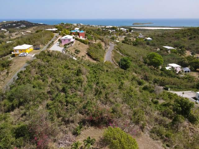 57-D Southgate Farm Ea, St. Croix, VI 00820 (MLS #21-838) :: The Boulger Team @ Calabash Real Estate