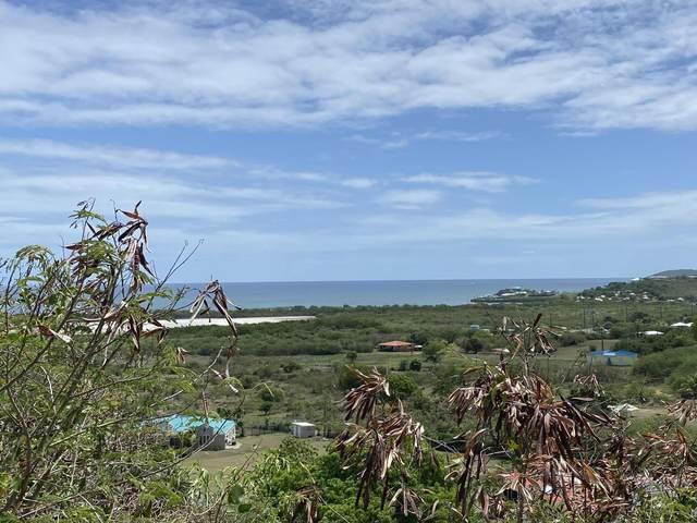 11 Southgate Farm Ea, St. Croix, VI 00820 (MLS #21-851) :: The Boulger Team @ Calabash Real Estate
