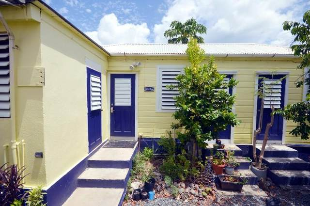 1 Nye Straede, St. Thomas, VI 00802 (MLS #21-861) :: Coldwell Banker Stout Realty