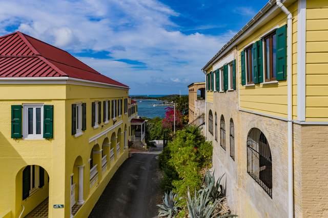 58 et al Hill Street Ch, St. Croix, VI 00820 (MLS #21-863) :: Coldwell Banker Stout Realty