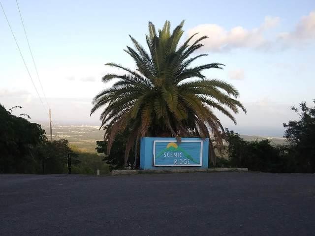42 Hard Labor Pr, St. Croix, VI 00840 (MLS #21-866) :: The Boulger Team @ Calabash Real Estate