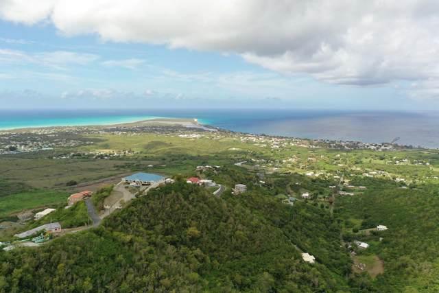 Rem Frederikshaab We, St. Croix, VI 00840 (MLS #21-871) :: The Boulger Team @ Calabash Real Estate
