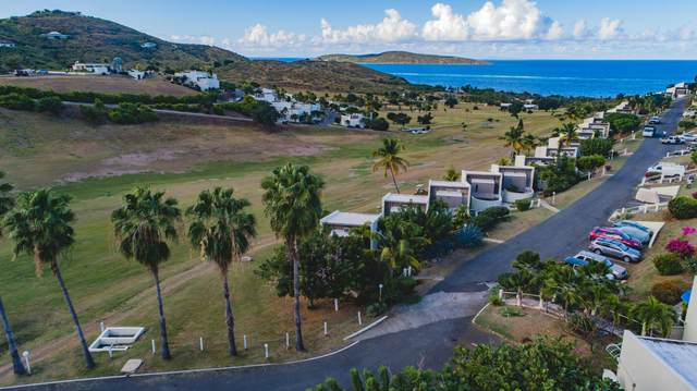 145 Teagues Bay Eb, St. Croix, VI 00820 (MLS #21-881) :: Coldwell Banker Stout Realty