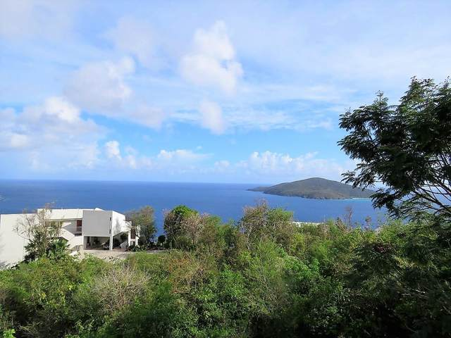 31 Upper Lovenlund Gns, St. Thomas, VI 00802 (MLS #21-886) :: Coldwell Banker Stout Realty