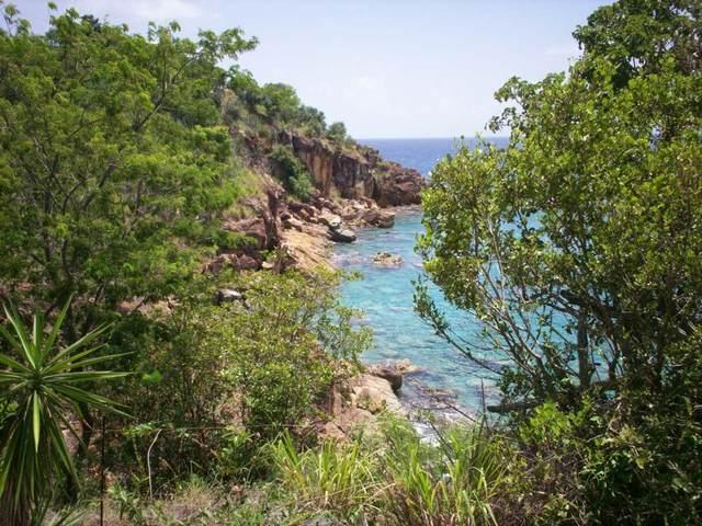 3 REM Water Island Ss, St. Thomas, VI 00802 (MLS #21-887) :: The Boulger Team @ Calabash Real Estate