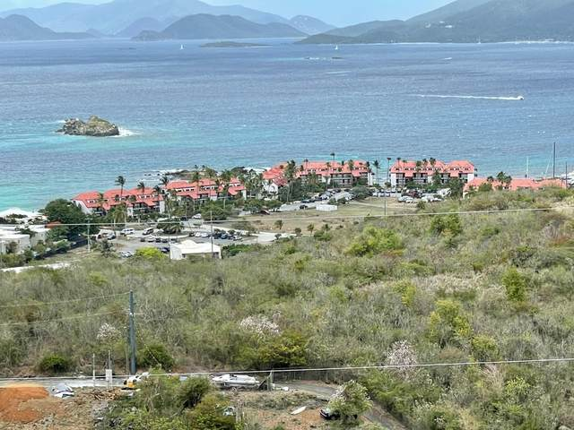19-2-146 Smith Bay Ee, St. Thomas, VI 00802 (MLS #21-888) :: Coldwell Banker Stout Realty