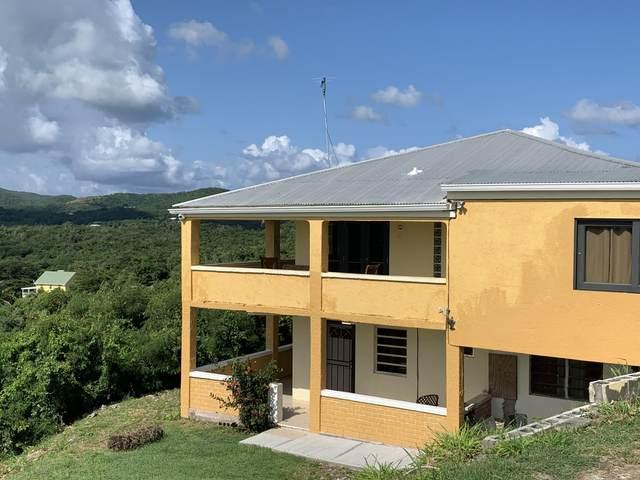 47 Colquohoun Ki, St. Croix, VI 00850 (MLS #21-904) :: Hanley Team | Farchette & Hanley Real Estate
