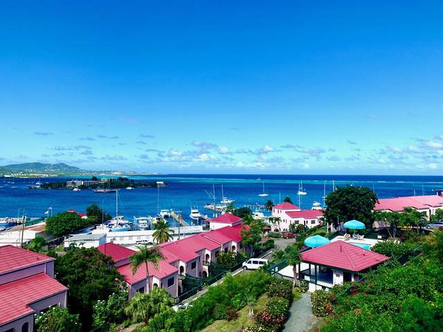 #220 Mt. Welcome Ea, St. Croix, VI 00820 (MLS #21-908) :: Hanley Team | Farchette & Hanley Real Estate