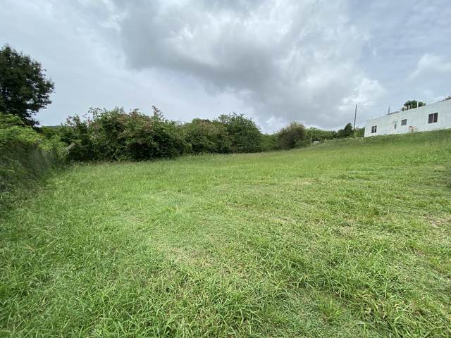 1-J-12 Sion Hill Qu, St. Croix, VI 00820 (MLS #21-913) :: Coldwell Banker Stout Realty