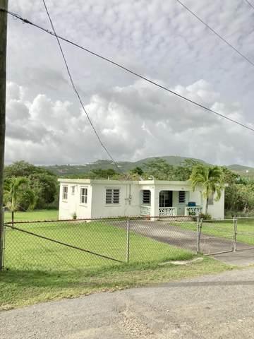 184 Concordia We, St. Croix, VI 00840 (MLS #21-916) :: The Boulger Team @ Calabash Real Estate