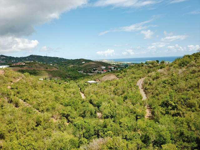 112 & 116 Hermon Hill Co, St. Croix, VI 00820 (MLS #21-931) :: Coldwell Banker Stout Realty