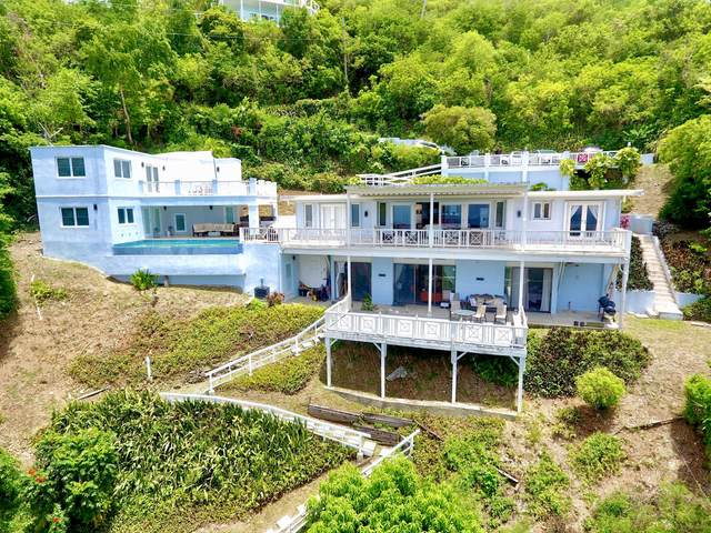195 La Vallee Nb, St. Croix, VI 00850 (MLS #21-933) :: Coldwell Banker Stout Realty