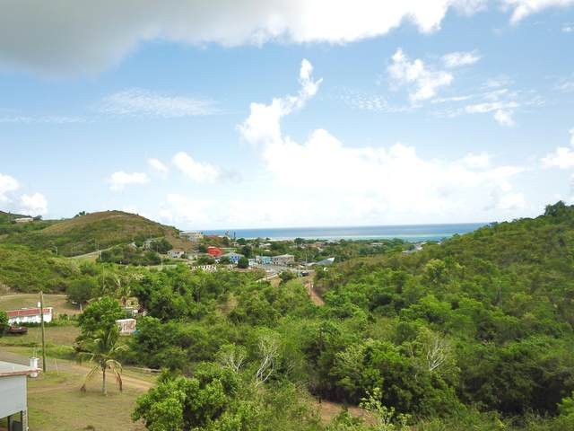 17-B & 17-G Contentment Co, St. Croix, VI 00820 (MLS #21-938) :: Coldwell Banker Stout Realty