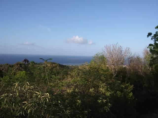 286 La Grande Prince Co, St. Croix, VI 00820 (MLS #21-939) :: Coldwell Banker Stout Realty