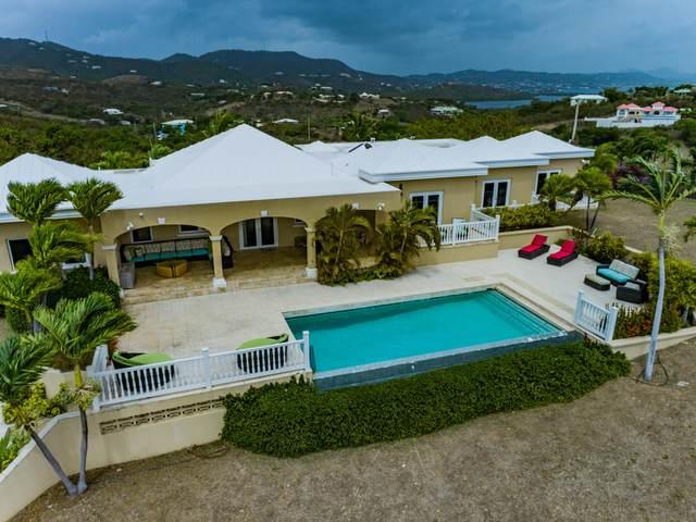 125 Mt. Pleasant Ea, St. Croix, VI 00820 (MLS #21-940) :: Coldwell Banker Stout Realty