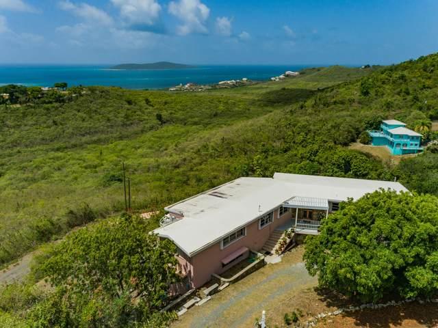 44 Seven Hills Ea, St. Croix, VI 00820 (MLS #21-947) :: Coldwell Banker Stout Realty