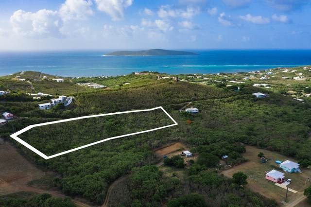 98, 99, 100 Cotton Valley Eb, St. Croix, VI 00820 (MLS #21-957) :: Coldwell Banker Stout Realty