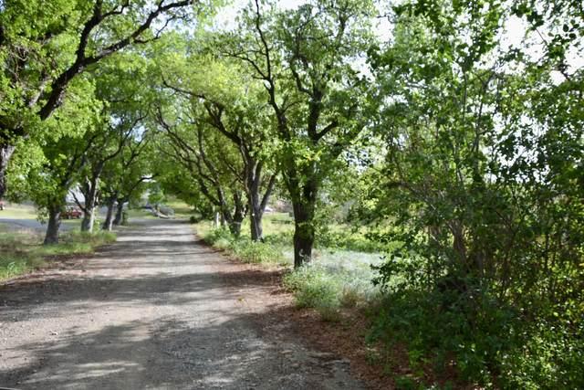 4 & 5 Orange Grove Co, St. Croix, VI 00820 (MLS #21-964) :: Hanley Team | Farchette & Hanley Real Estate