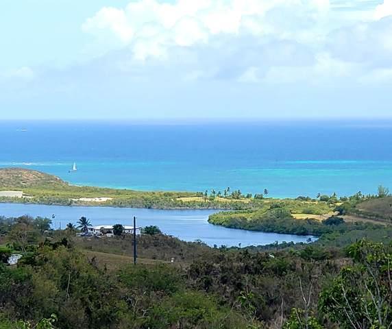 20 Marienhoj Ea, St. Croix, VI 00820 (MLS #21-969) :: Hanley Team   Farchette & Hanley Real Estate