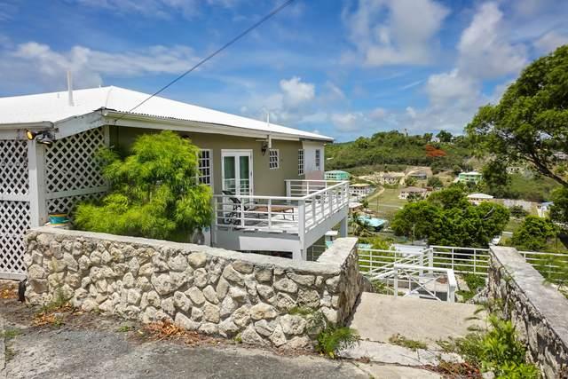 46 Sion Hill Qu, St. Croix, VI 00820 (MLS #21-987) :: Hanley Team | Farchette & Hanley Real Estate