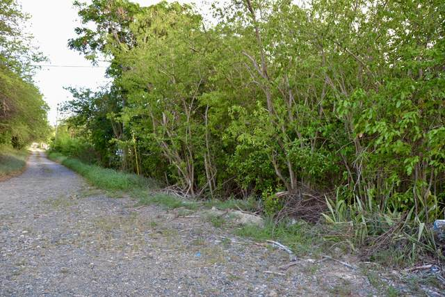 39-B La Grande Prince Qu, St. Croix, VI 00820 (MLS #21-996) :: Hanley Team | Farchette & Hanley Real Estate