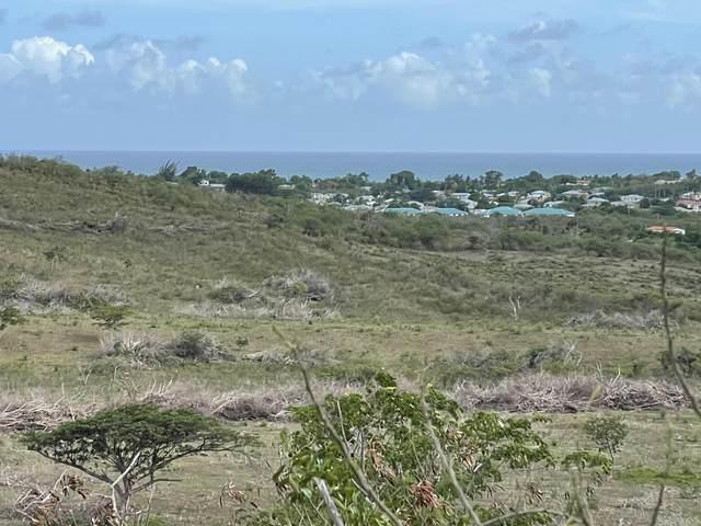 153 La Grange We, St. Croix, VI 00850 (MLS #21-998) :: Hanley Team   Farchette & Hanley Real Estate