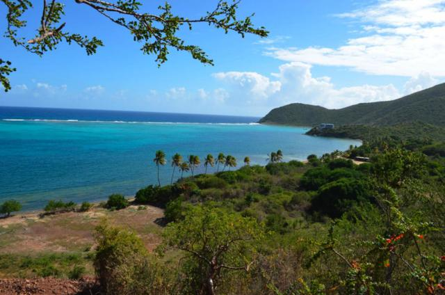 Parcel 29 Virgin Gorda Central, BVI, VI 00000 (MLS #16-2075) :: Hanley Team | Farchette & Hanley Real Estate