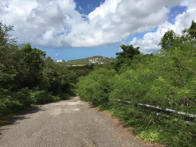 73 Bugby Hole Co, St. Croix, VI 00820 (MLS #16-664) :: Hanley Team | Farchette & Hanley Real Estate