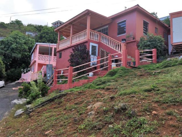 60 Anna's Fancy Kps, St. Thomas, VI 00802 (MLS #17-770) :: Hanley Team | Farchette & Hanley Real Estate
