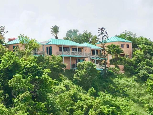 63 Eliza's Retreat Ea, St. Croix, VI 00820 (MLS #18-1573) :: Hanley Team | Farchette & Hanley Real Estate