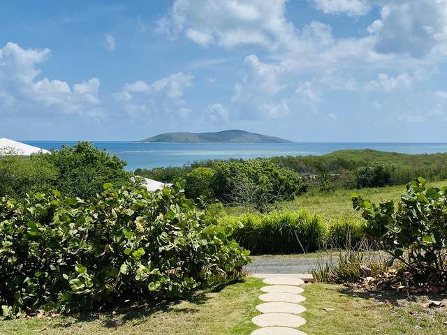 77 Green Cay Ea, St. Croix, VI 00820 (MLS #18-1616) :: Coldwell Banker Stout Realty