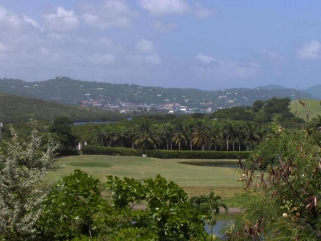 65 Anna's Hope Ea, St. Croix, VI 00820 (MLS #18-1653) :: The Boulger Team @ Calabash Real Estate