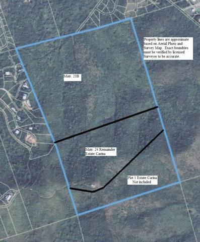 23B & 24 Carina Ea, St. Croix, VI 00820 (MLS #18-1740) :: Hanley Team | Farchette & Hanley Real Estate