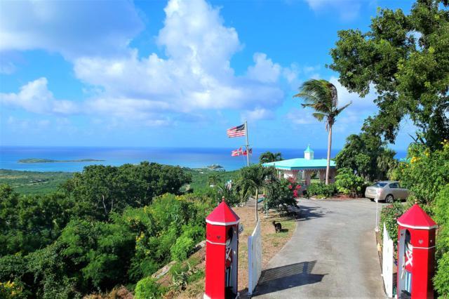 65 Seven Hills Ea, St. Croix, VI 00820 (MLS #18-1816) :: Hanley Team | Farchette & Hanley Real Estate