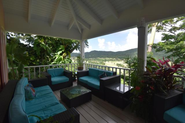 22 River Pr, St. Croix, VI 00850 (MLS #18-1855) :: Hanley Team | Farchette & Hanley Real Estate