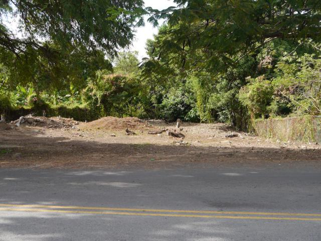 1 & 2 Eastern Suburb Ch, St. Croix, VI 00820 (MLS #18-19) :: Hanley Team | Farchette & Hanley Real Estate