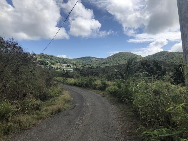 144 Mt. Pleasant Ea, St. Croix, VI 00820 (MLS #18-275) :: Hanley Team | Farchette & Hanley Real Estate