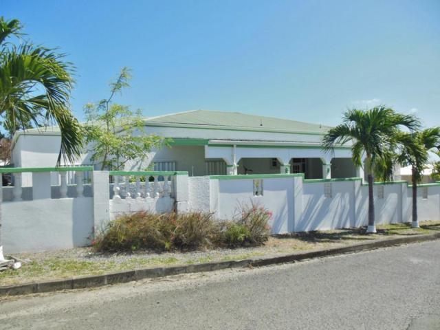 233 Hermon Hill Co, St. Croix, VI 00820 (MLS #18-342) :: Hanley Team | Farchette & Hanley Real Estate