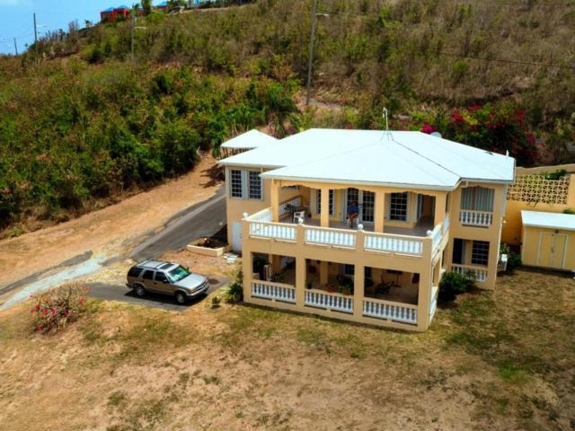 100 Southgate Farm Ea, St. Croix, VI 00820 (MLS #18-939) :: Hanley Team | Farchette & Hanley Real Estate