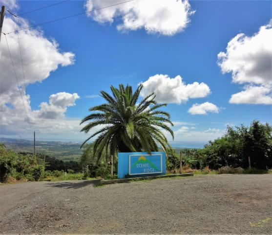 69 Hard Labor Pr, St. Croix, VI 00850 (MLS #19-103) :: Hanley Team | Farchette & Hanley Real Estate