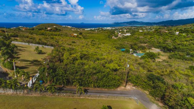 6-B St. John Qu, St. Croix, VI 00820 (MLS #19-1137) :: Hanley Team | Farchette & Hanley Real Estate