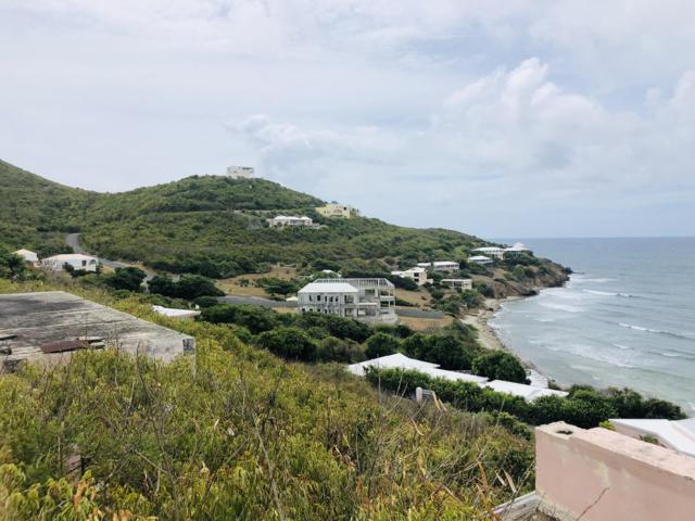 49 Grapetree Bay Eb, St. Croix, VI 00820 (MLS #19-1148) :: Hanley Team | Farchette & Hanley Real Estate