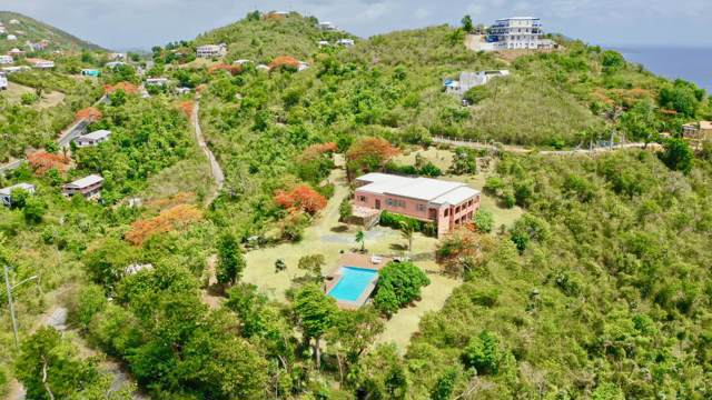 3D-5AA Tabor & Harmony Ee, St. Thomas, VI 00802 (MLS #19-1163) :: Hanley Team | Farchette & Hanley Real Estate