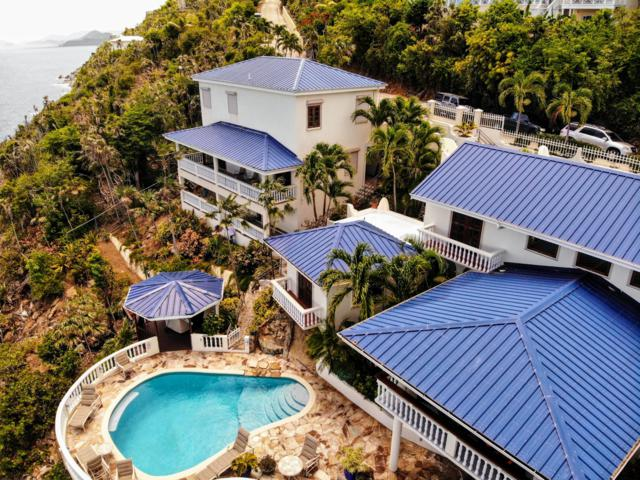 C-24 Lovenlund Gns, St. Thomas, VI 00802 (MLS #19-1167) :: Coldwell Banker Stout Realty