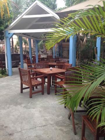 17 Frederiksted Fr, St. Croix, VI 00840 (MLS #19-1199) :: Hanley Team | Farchette & Hanley Real Estate