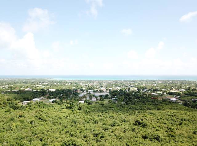 21 Whim (Two Will) We, St. Croix, VI 00840 (MLS #19-1417) :: Hanley Team | Farchette & Hanley Real Estate