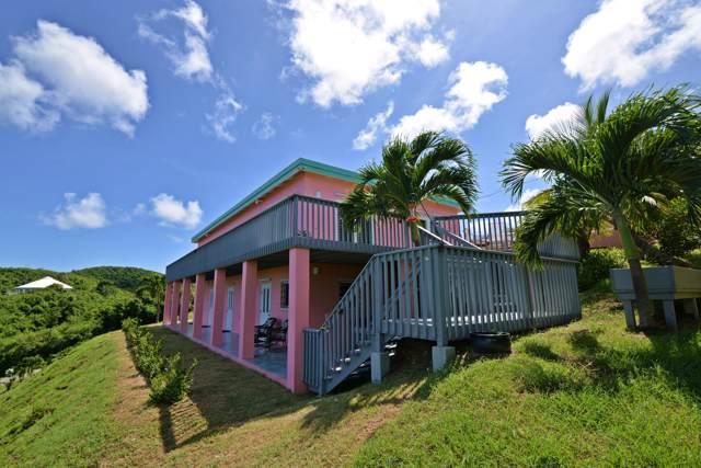 77 Southgate Farm Ea, St. Croix, VI 00820 (MLS #19-1573) :: Hanley Team | Farchette & Hanley Real Estate